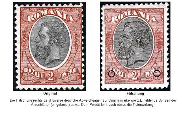 1893-2lei