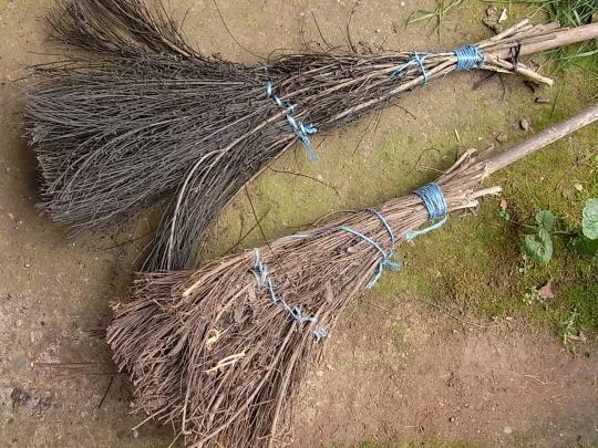 Balais en branches de saule