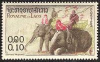 Elephants laos