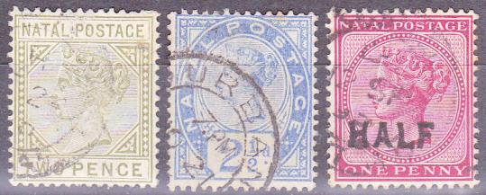 Img 151