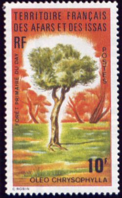 Issas 62